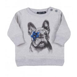SWEAT / BLUZA EMET DOG