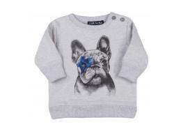 SWEAT / BLUZA EMET DOG